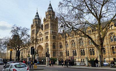 Natural History Museum de Londres