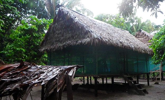 Notre maison pour ce deuxième jour en Amazonie