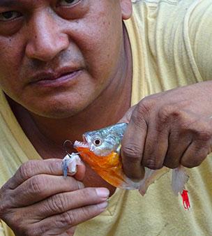 Deuxième jour en Amazonie - La pêche aux piranhas