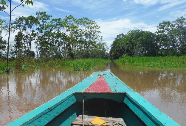 Notre dernier jour en Amazonie