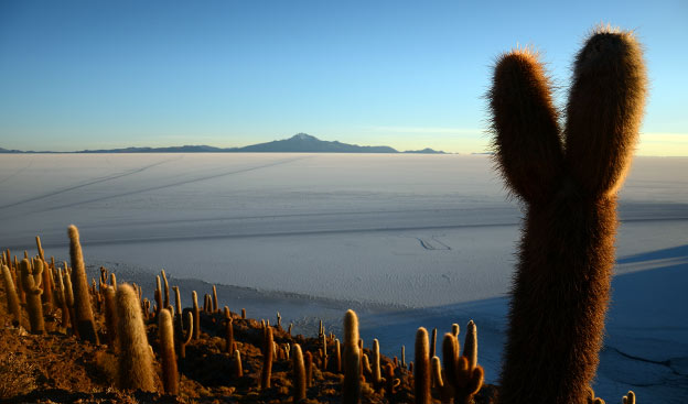 Le Salar de Uyuni, le top 1 des incontournables de la Bolivie