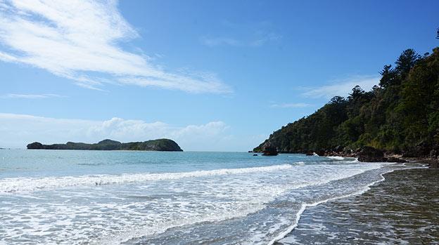 La célèbre plage des kangourous de Mackay