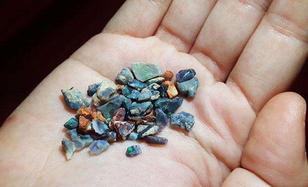 Trouver des black opales à Lightening Ridge